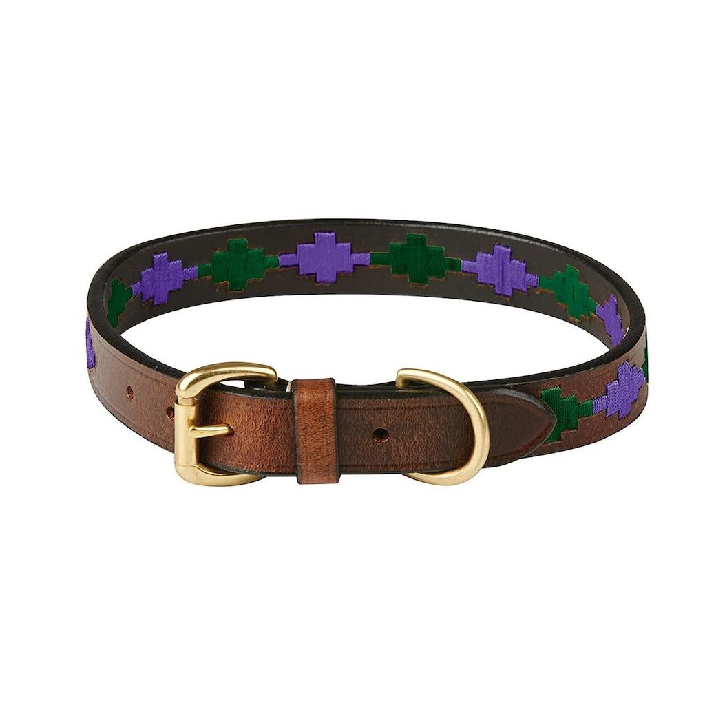 WeatherBeeta Hunde-Halsband »Polo Leder-Hundehalsband«, Textil, (1 St.)