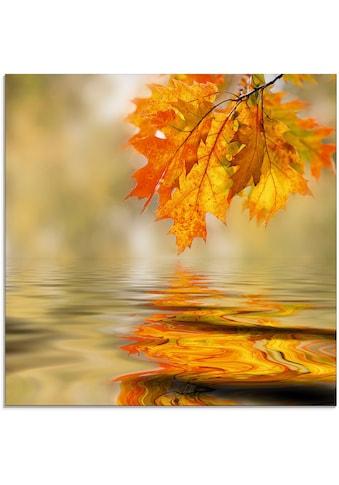 Artland Glasbild »Herbstblätter«, Blätter, (1 St.) kaufen