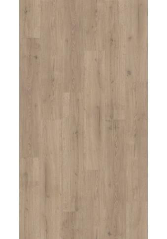 PARADOR Packung: Vinylboden »Basic 4.3  -  Eiche Infinity Grau«, 1210 x 219 x 4,3 mm, 2,4 m² kaufen