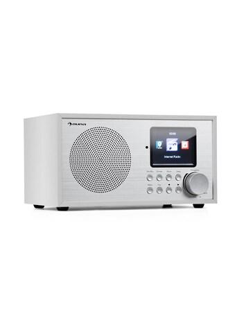 Auna Silver Star Mini Internet DAB+/UKW Radio, WiFi, BT, DAB+/UK kaufen