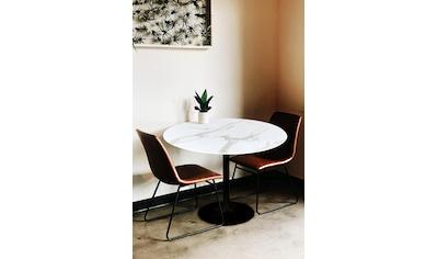my home Esstisch »Alannah«, Tischplatte in Marmoroptik kaufen