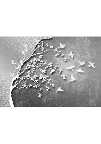 Consalnet Vliestapete »Silber Baum mit Vögeln«, verschiedene Motivgrößen, für das Büro... kaufen