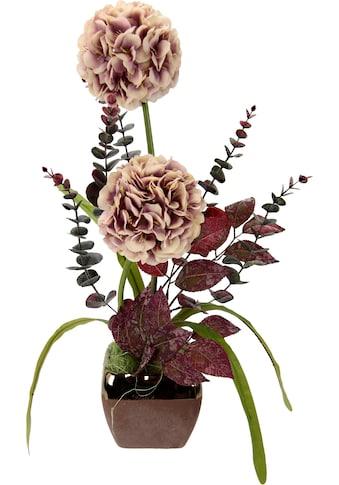 I.GE.A. Kunstpflanze, Arrangement im Topf kaufen