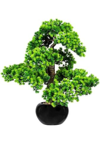 Creativ green Kunstbonsai »Bonsai Lärche«, im Keramiktopf kaufen