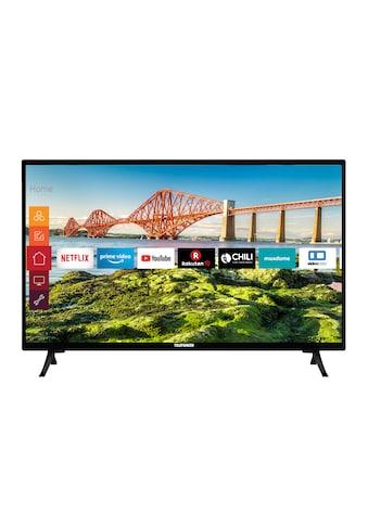 Telefunken XH24J501V LED - Fernseher (60 cm / (24 Zoll), HD - ready kaufen