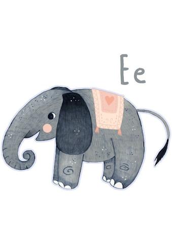 Wall-Art Wandtattoo »Grauer Elefant Buchstabe E« kaufen