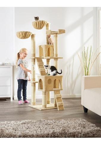 ABUKI Kratzbaum »Coco«, hoch, BxTxH: 50x50x170 cm kaufen
