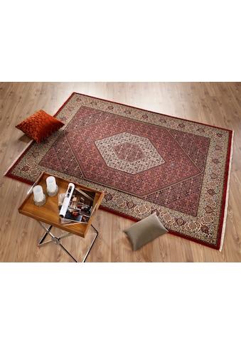 OCI DIE TEPPICHMARKE Orientteppich »Kamaro Bidjar«, rechteckig, 5 mm Höhe, reine... kaufen