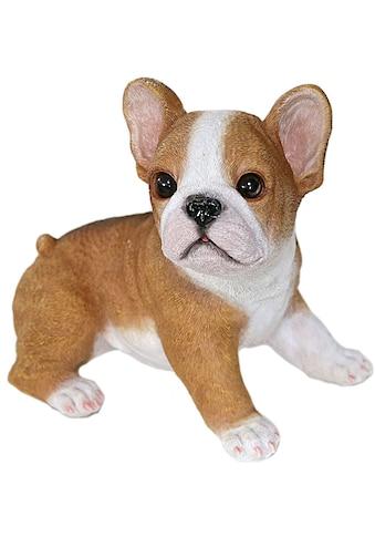 Casa Collection by Jänig Tierfigur »Bulldoge sitzend, Breite ca: 19,8cm« kaufen