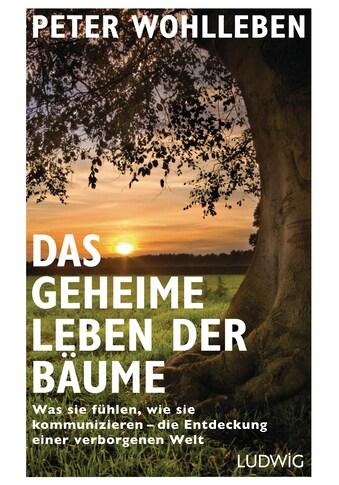 Buch »Das geheime Leben der Bäume / Peter Wohlleben« kaufen