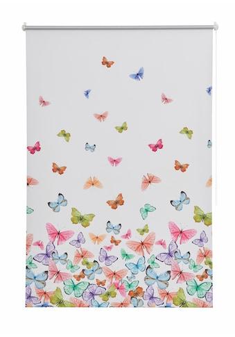 Seitenzugrollo »Butterfly«, Home affaire, verdunkelnd, ohne Bohren, freihängend kaufen