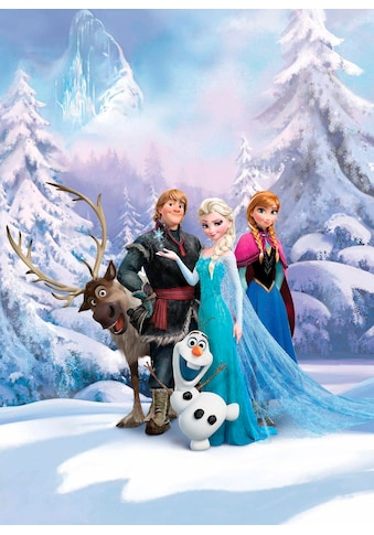KOMAR Set: Fototapete »Frozen Winter Land«, Ausgezeichnet lichtbeständig kaufen