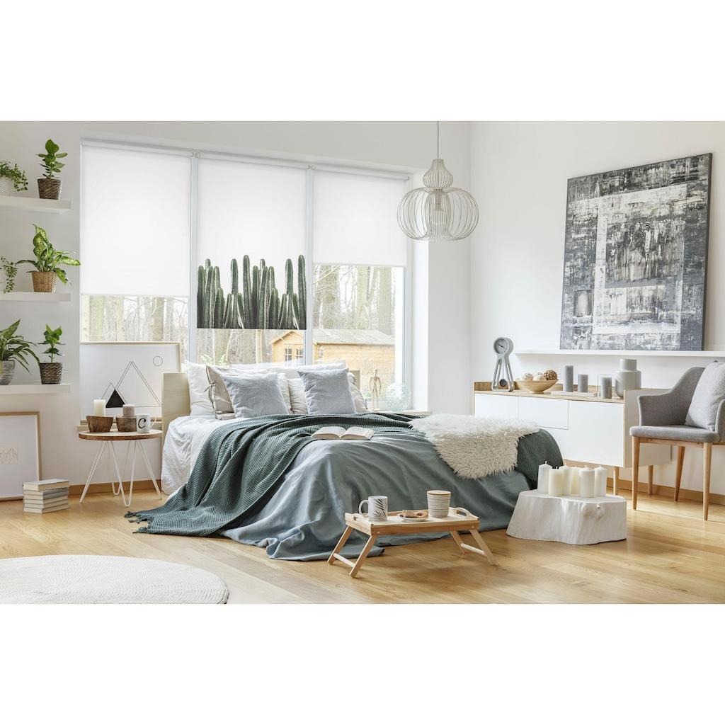 GARDINIA Seitenzugrollo »EASYFIX Rollo Dekor Kaktus«, Lichtschutz, ohne Bohren