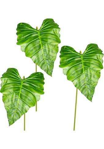 Creativ green Kunstzweig »Callablatt«, 3er Set kaufen