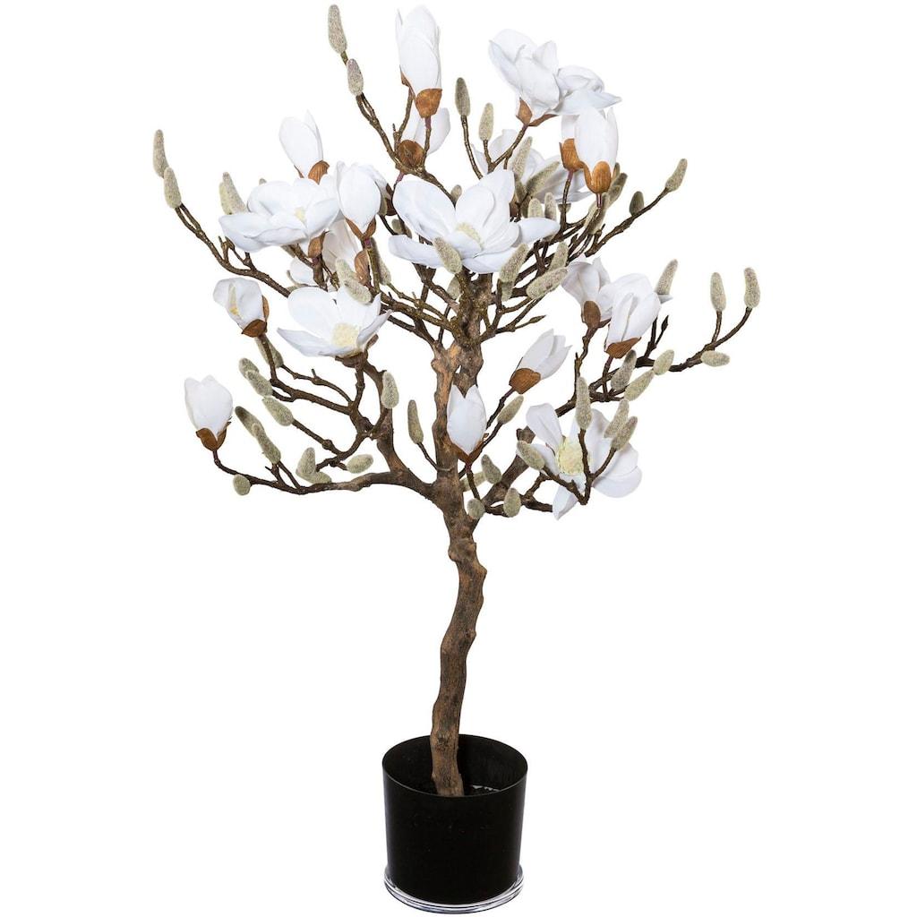 Creativ green Kunstpflanze »Magnolienbaum«