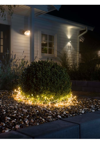 KONSTSMIDE LED-Lichterkette, 200 St.-flammig, Micro LED Büschellichterkette Cluster,... kaufen