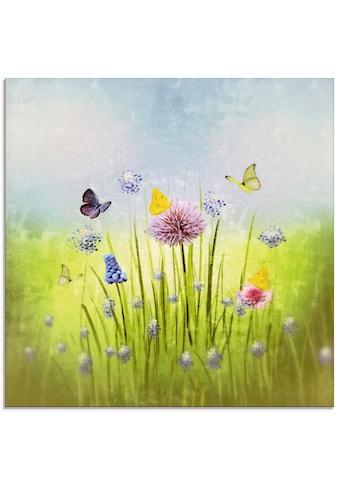 Artland Glasbild »Frühlingswiese«, Blumenwiese, (1 St.) kaufen