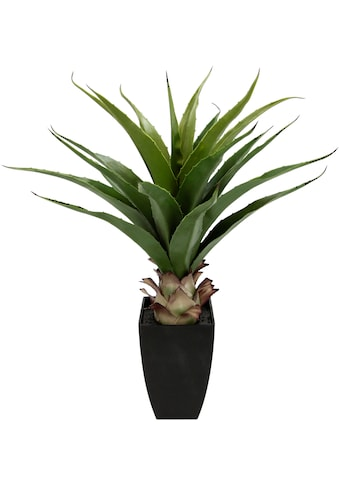 I.GE.A. Kunstpflanze »Agave im Topf« kaufen