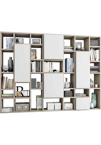 Raumteilerregal »TORO 520-2«, Breite 295 cm kaufen