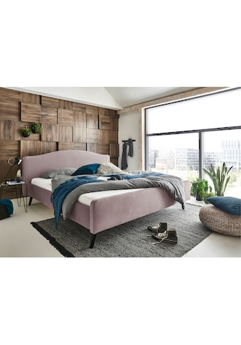 ATLANTIC home collection Polsterbett »Tamiga«, mit Massivholzfüße kaufen