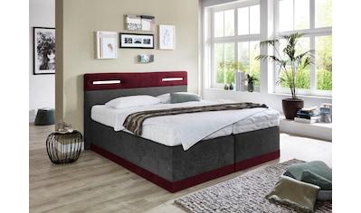 Westfalia Schlafkomfort Boxspringbett, mit LED-Beleuchtung kaufen