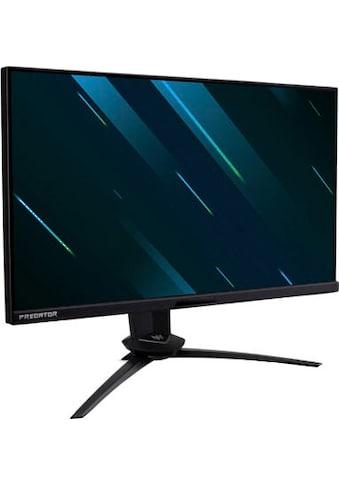 """Acer Gaming-Monitor »Predator X25«, 62,2 cm/24,5 """", 1920 x 1080 px, Full HD, 1 ms Reaktionszeit, 360 Hz kaufen"""