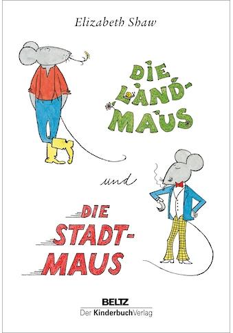 Buch »Die Landmaus und die Stadtmaus / Elizabeth Shaw« kaufen