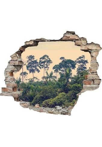 queence Wandtattoo »Regenwald« kaufen