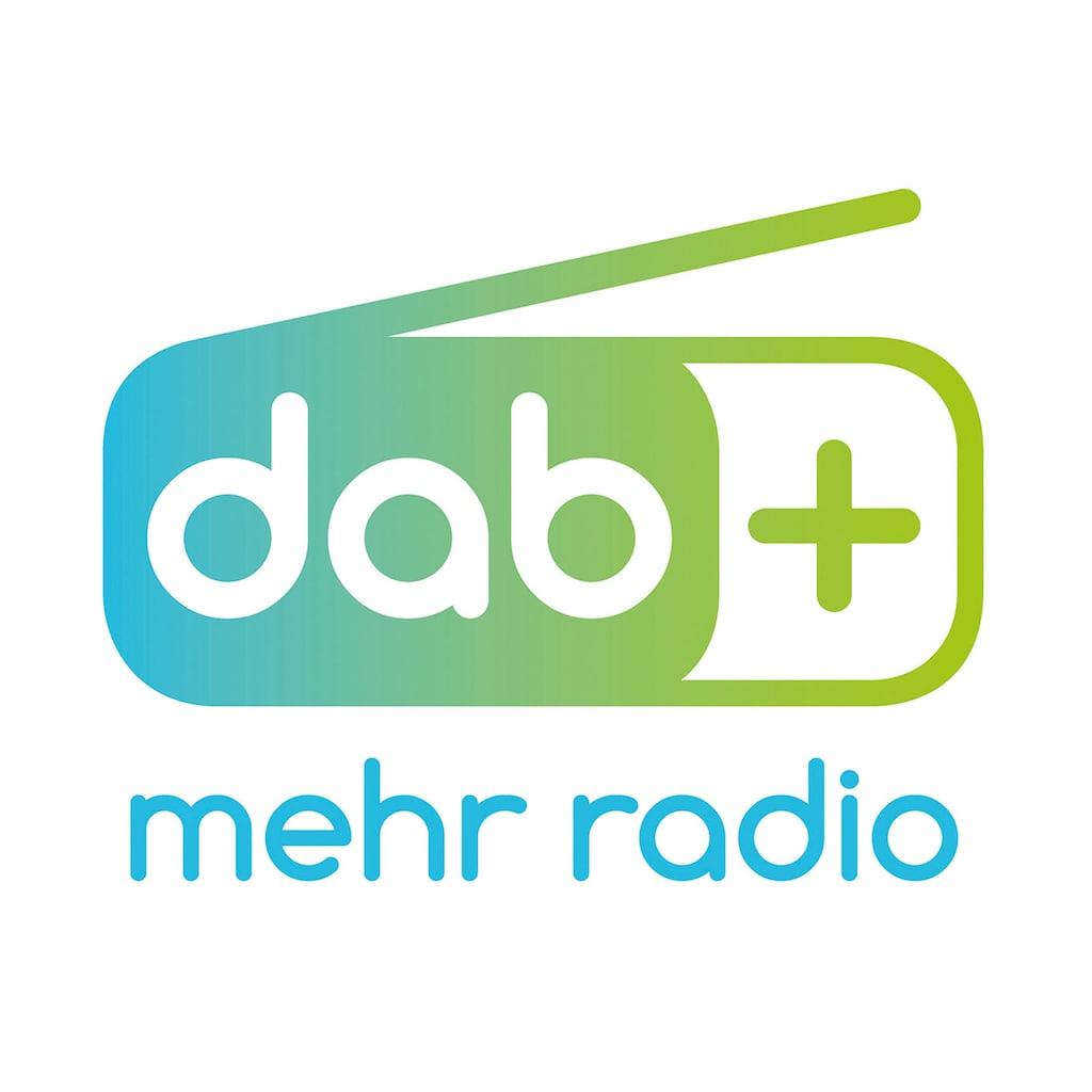 Karcher Digitalradio (DAB+) »DAB 9000CDi«, (WLAN-Bluetooth Digitalradio (DAB+)-Internetradio 36 W), mit CD-Player (DAB+/UKW, Bluetooth, 2.1 Kanäle)