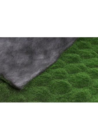 Botanic-Haus Künstliche Zimmerpflanze »Moosmatte« kaufen