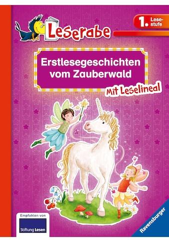 Buch »Erstlesegeschichten vom Zauberwald / THiLO, Markus Grolik, Lila L. Leiber, Almud... kaufen