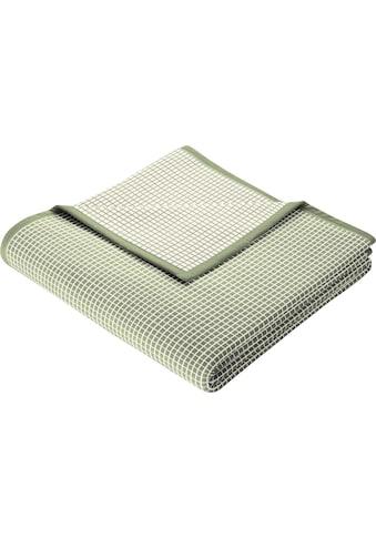 Wohndecke »New Cotton«, BIEDERLACK kaufen