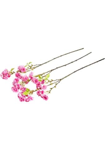 Botanic-Haus Kunstzweig »Edel-Frühlingsblütenzweig« kaufen