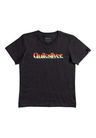 Quiksilver T-Shirt »Primary Colours« kaufen