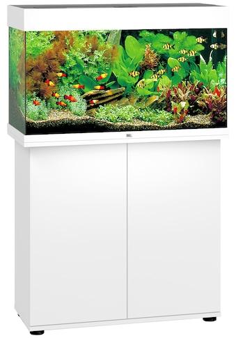JUWEL AQUARIEN Aquarien-Set »Rio 125 LED«, BxTxH: 81x36x123 cm, 125 l, mit Unterschrank kaufen