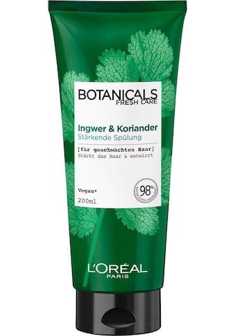 BOTANICALS Haarspülung »Ingwer und Koriander«, stärkend kaufen