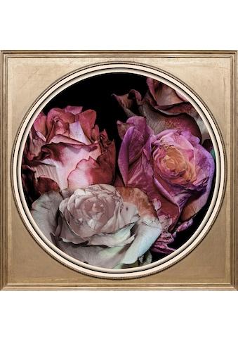 queence Acrylglasbild »Getrocknete Rosen« kaufen