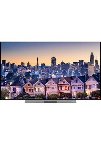 Toshiba 49UL5A63DG LED - Fernseher (123 cm / (49 Zoll), 4K Ultra HD, Smart - TV kaufen