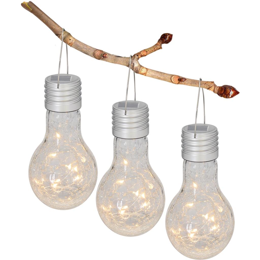 näve LED Gartenleuchte, LED-Board, Warmweiß, Solarleuchte aus Glas in Glühbirnenform