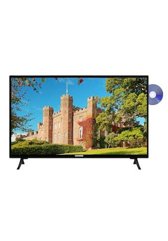 Telefunken XH24J101D LED - Fernseher (55 cm / (22 Zoll), HD - ready kaufen