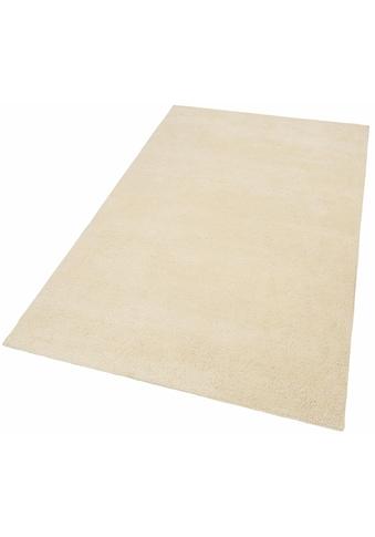 THEKO Wollteppich »Hadj Uni«, rechteckig, 25 mm Höhe, echter Berber, reine Wolle,... kaufen