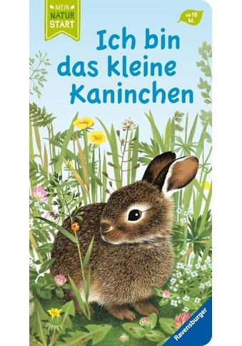 Buch »Ich bin das kleine Kaninchen / Gerlinde Wiencirz, Gerda Müller« kaufen