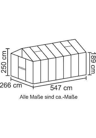 VITAVIA Gewächshaus »Zeus 13800«, BxTxH: 266x547x250 cm, silber, 16 mm kaufen