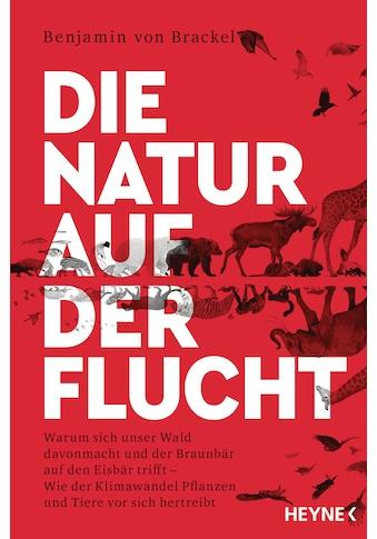 Buch »Die Natur auf der Flucht / Benjamin von Brackel« kaufen