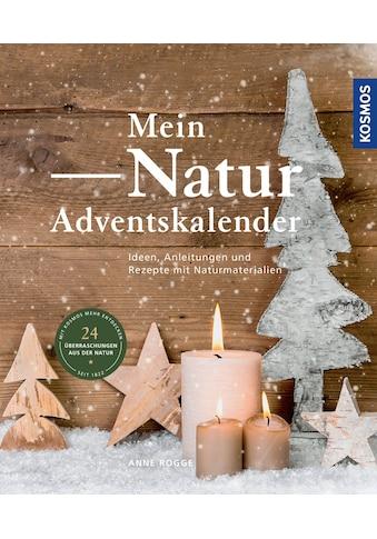 Buch Mein Natur - Adventskalender / Anne Rogge kaufen