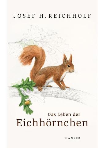 Buch »Das Leben der Eichhörnchen / Josef H. Reichholf, Johann Brandstetter« kaufen