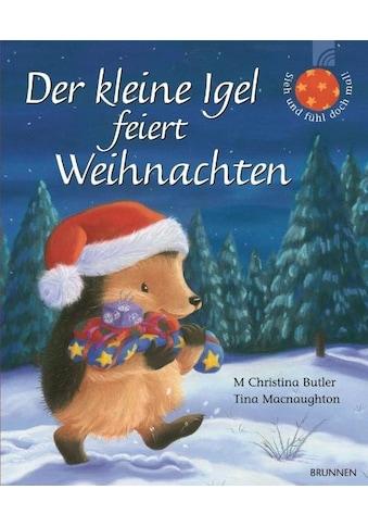 Buch »Der kleine Igel feiert Weihnachten / M Christina Butler, Tina Macnaughton« kaufen