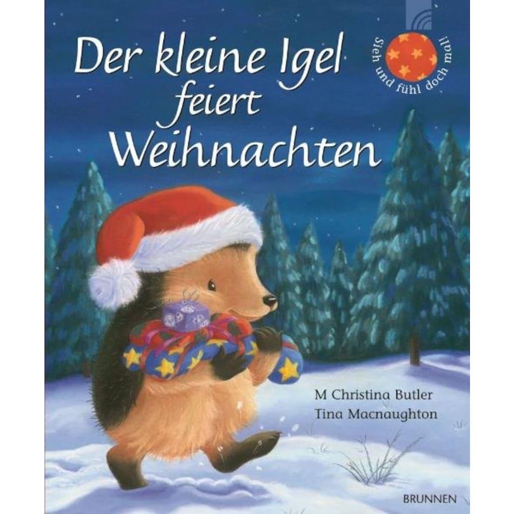 Buch »Der kleine Igel feiert Weihnachten / M Christina Butler, Tina Macnaughton«