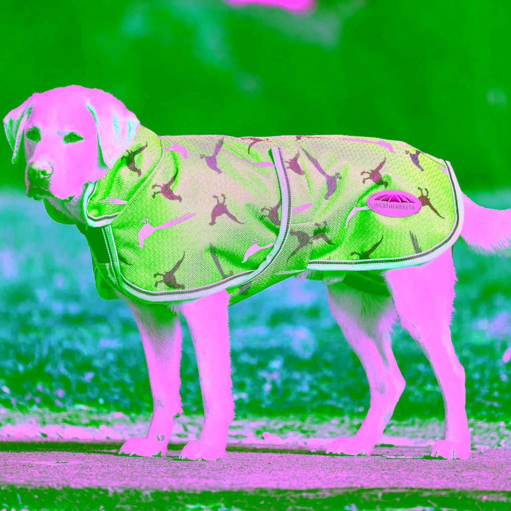 WeatherBeeta Hundemantel »Parka 1200d Deluxe«, Polyester, (1)
