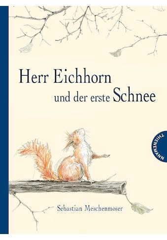 Buch Herr Eichhorn und der erste Schnee / Sebastian Meschenmoser, Sebastian Meschenmoser kaufen